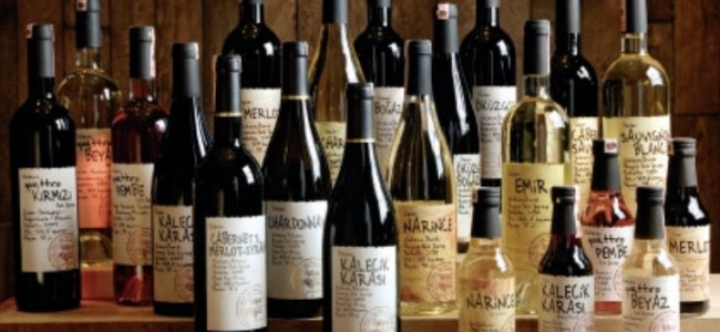 VINKARA WINES:  The Grape, Legacy & Tradition!